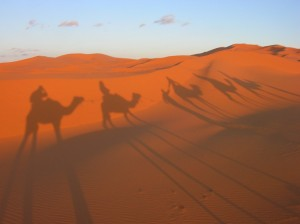 Carovane nel deserto le antiche rotte del Sahara cammelli dromedari egitto marocco