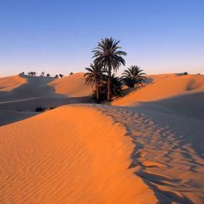 Marocco-sahara-viaggio-deserto