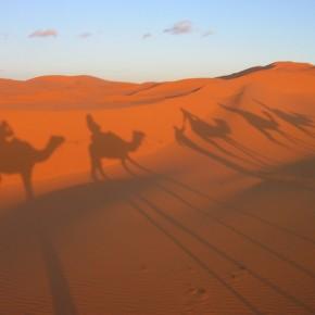 Carovane nel deserto: le antiche rotte del Sahara